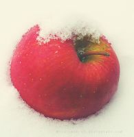 snowy apple by Mizu-chan-x3