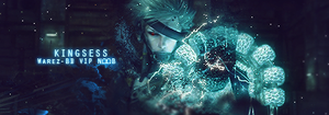 MGS: Revengeance Signature by kingsess