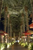 Town Square Canopy by xjoelywoelyx