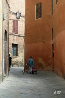 In the streets of Siena by Sphongled