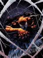 Superior SpiderMan coloPask by Pask