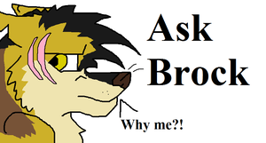 Ask Brock by MajuFogo