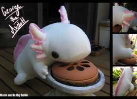George the Axolotl by heilei