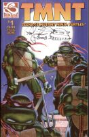 tmnt signed issue 1 by channandeller