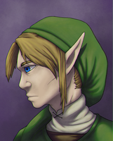 The Legend Of Zelda by stayingHere