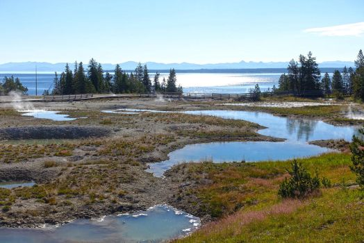 Yellowstone National Park Hot Spring Field by Trisaw1