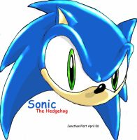 Sonic's Head by SonicGod