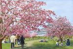 Hanami by ChristopherWillmot