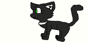 A Drawing of My Cat Lucky by Shadymist122