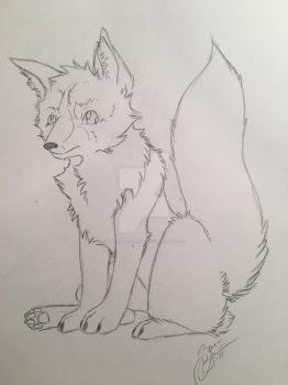 WIP sketch puppy by BlackEyedNisha