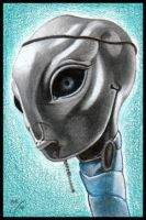 Clones Taun Wei Sketch Card by MJasonReed