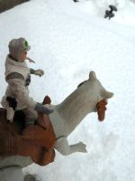 Hoth 5 by evangeline40003