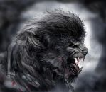 The Wolfman by dcbats2000
