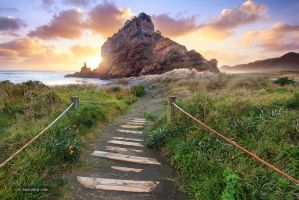 Piha, New Zealand by chrisgin