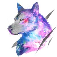 Cosmic Doge by shimhaq98