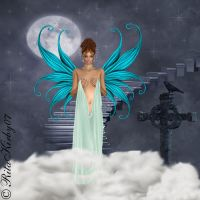 Fairy Decent by RCWK