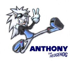 Anthony the Hedgehog 2: Redux by PhoenixG