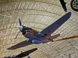 P-40 Warhawk by DarkWizard83