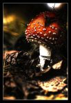 HDR flying agaric by gulbagge