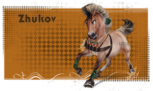 Zhukov by Moon-illusion