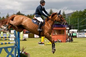 Jumping stock 47 by Kennelwood-Stock