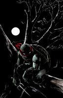 TMNT: Raphael: Bad Moon Rising #1 by mooncalfe