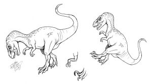 Draw a T-rex or Velociraptor 3 by Diana-Huang