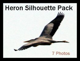 Heron Silhouette Pack by Della-Stock