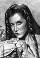 Leia - Endor by David-c2011