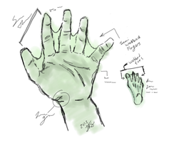 Technical Sketch of Jenou Hands and Feet by kingy9467