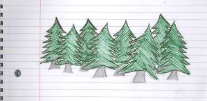 Pine Trees by Creativity-Squared