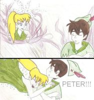 Tink's Assault on Peter by ThePixiePirate
