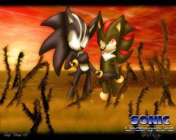 DS Sonic and BA Shadow by SonicRemix