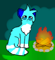 Contest Entry for Shine-Cat by foxtain