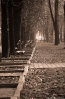 Sepia Autumn by joanchris