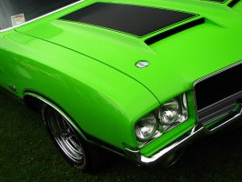 .green. by AmericanMuscle
