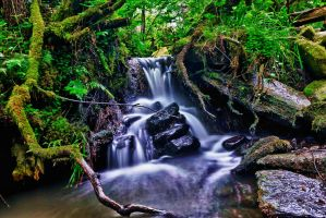 waterfall 4 by derrybarry