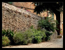 Along The Wall - Valldemossa by skarzynscy