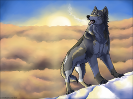Top of the world by DrJo-jo