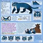 Switchback Reference v.3 (Not my art!!) by Enaxn