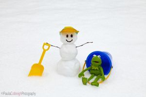 Kermit and the Snowman by La-Vita-a-Bella