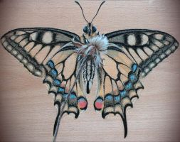 Butterfly on a chopping board by minkorarin