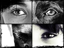 The Eye of the Beasts by Identifyed-Khaos