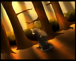Fall Forest-TGB by Evermore-warrior