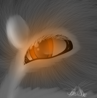 Wolf eye practice. by Jolts-of-Blue
