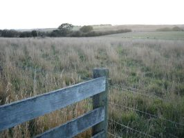 fence by serp-stock