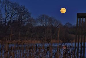 Moon over the lake by chevyhax