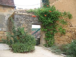 Dordogne - Door 22 by Maliciarosnoir-stock