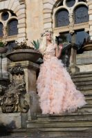 The leaving of cinderella - stock by Liancary-art