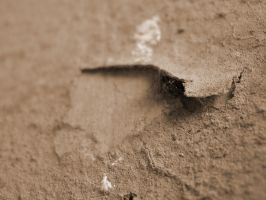 Wall Crack by DR13agoslav